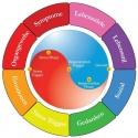 QHS META-Health Gesundheitsberatung